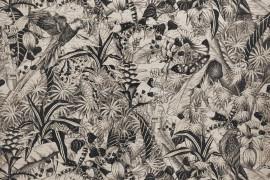 Kwazulu Wallpaper